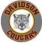 Davidson Middle School  Logo